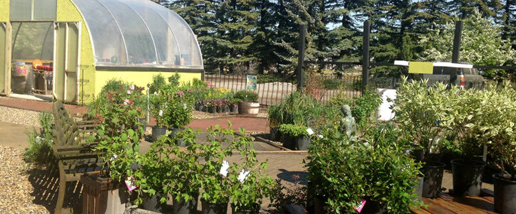 A New Garden Centre for the Calgary Area – Coming 2017