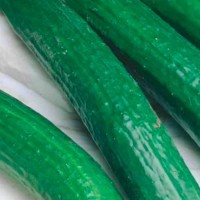 english long cucumber
