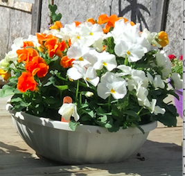 custom planter small