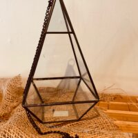 pyramid shaped terrarium