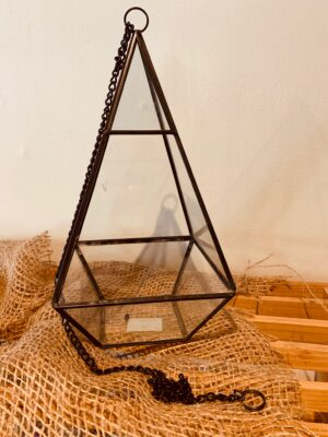 pyramid shaped terrarium