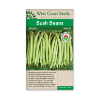 speedy bush bean seeds