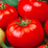 bush beefsteak tomato